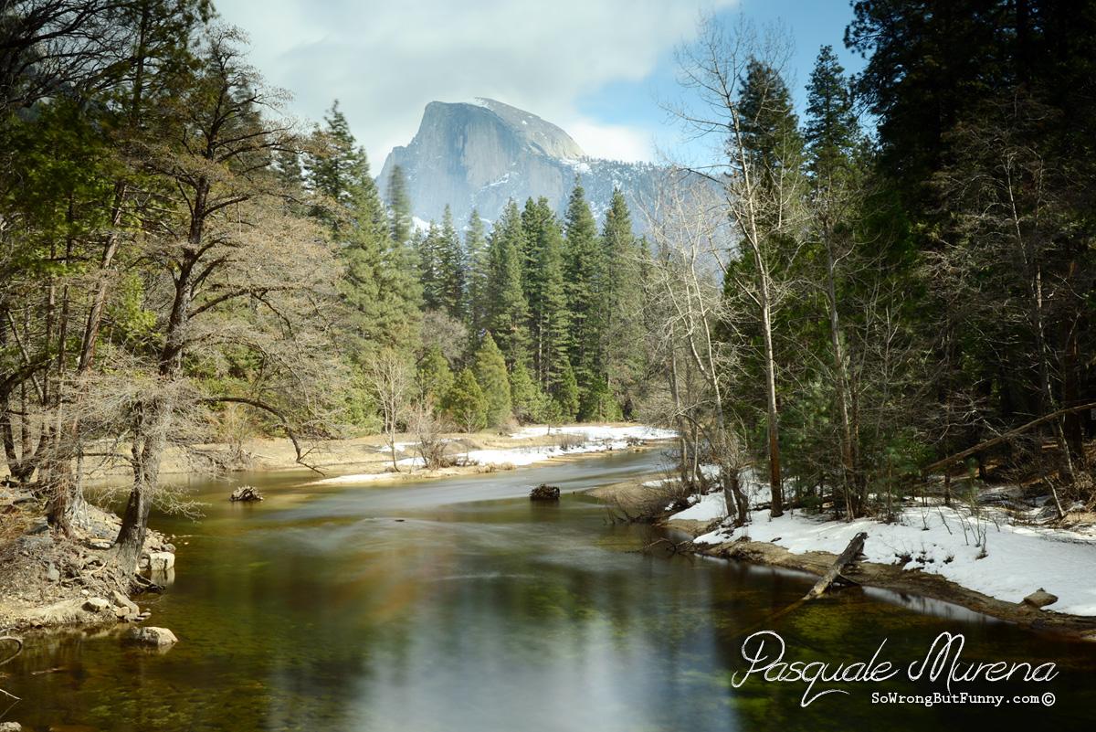 Nature Bridge Yosemite Reviews